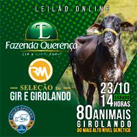 Leilão Fazenda Querença e Recanto do Machado será 23 de outubr